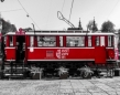 Plener pierwszych klas fotograficznych - Lwów 2019