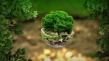 5 czerwca - Światowy Dzień Ochrony Środowiska